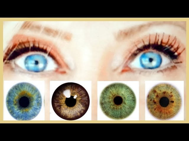 How To Make Your Eyes Pop! Blue Brown Green Hazel With The Right Colours – fabulous50s