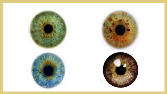 Make Your Eyes Pop With Color